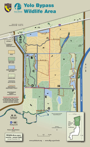 Yolo Bypass Wildlife Area Map